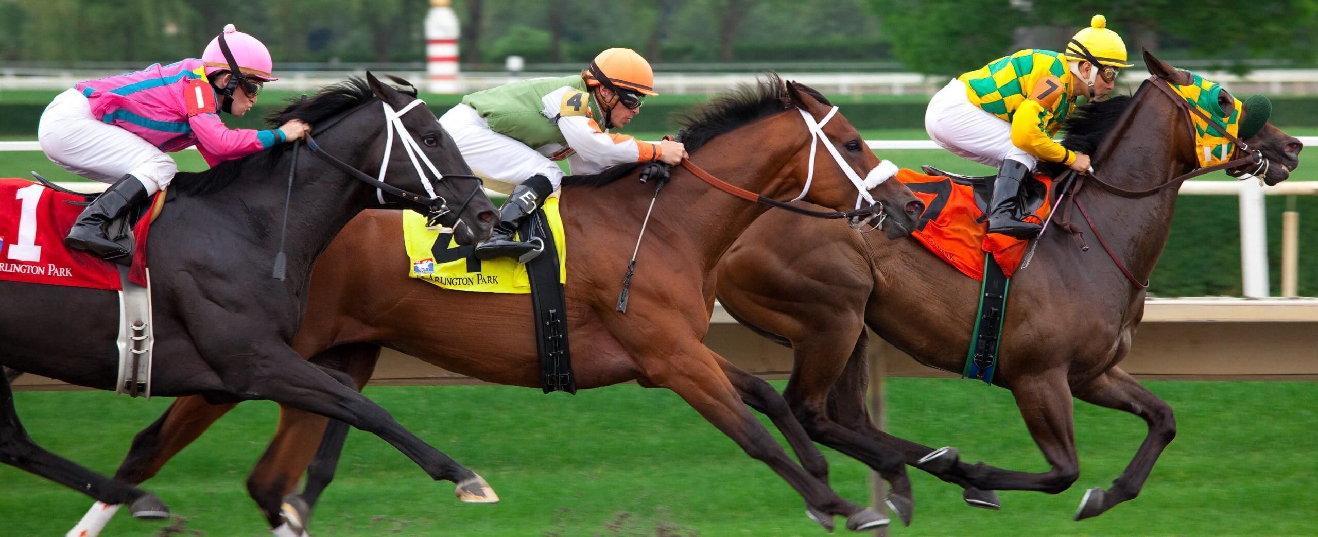 horse racing post